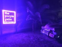 Purple Palm.jpg